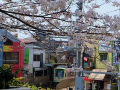 都電と満開の桜 飛鳥山