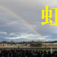 春の名古屋 その4  虹を見た