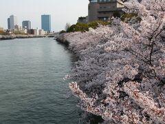 2014 続・大川のさくら散歩
