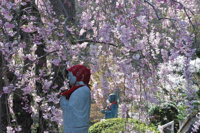 織物産業で栄えてきた桐生。<br />桐生には鋸屋根工場、洋館、木造建築など、数多くの近代化遺産が、現在の暮らしに共存しています。<br /><br />訪れた日は三大市が開催される第一土曜日、建造物と満開の桜を見ながら街歩きをしました。