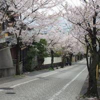 石切神社と桜
