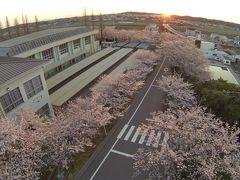 日の出狙いで再び桜坂空撮