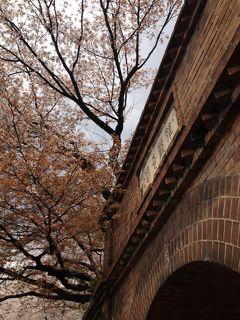 京都一周トレイル 東山コース(蹴上~清水山)+桜をもとめてぶらぶら歩き