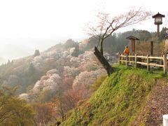 いにしえの都奈良・・吉野の下千本~中千本~上千本をめぐります。