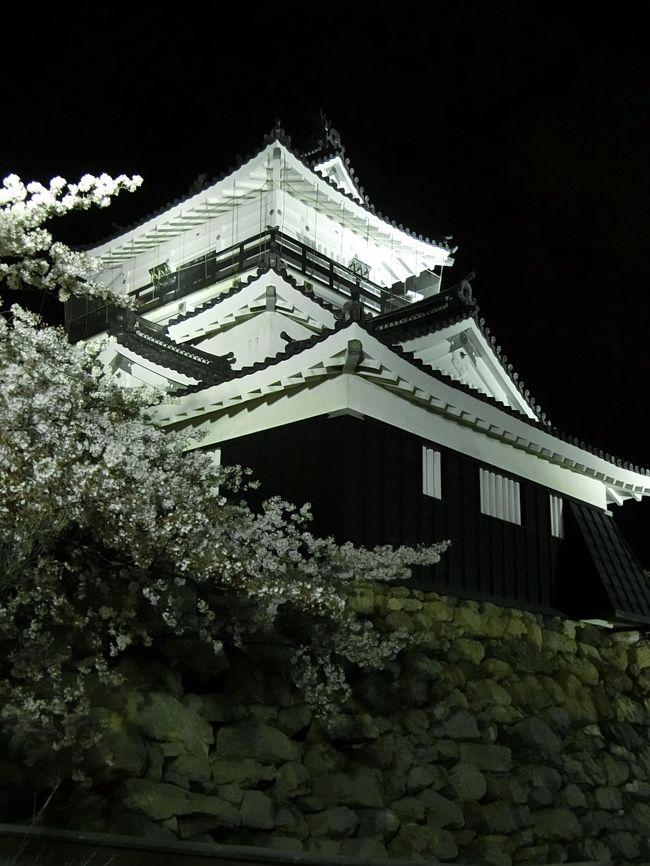 フラワーパークへ行った後、佐鳴湖へ移動し、満開の桜を見て、日が沈んだ後、浜松城で夜桜を見ました。<br /><br />たぶん人生初夜桜です!<br /><br /><br />■春の六連続旅行記 第四弾!!■