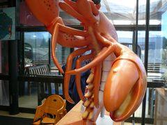 ニュージランド タウポで海老を食す 2009/12/09