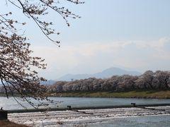 2014年4月 仙台グルメを堪能し、宮城県のサクラの名所(白石川堤一目千本桜)へ行ってきました