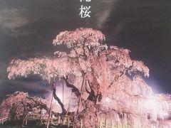会津の春を見るなら、今でしょ!!!