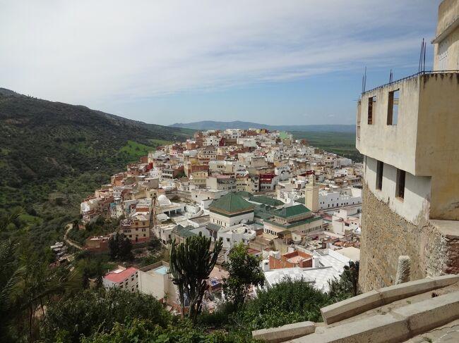 ヴォルビリス遺跡とムーレイ・イドリスは、メクネスの町から日帰りができるような距離なのですが、ゆっくり巡りたいので、一泊することに。<br /><br />ムーレイ・イドリスは789年にモロッコ最初のイスラム王朝イドリス朝が開かれた所です。<br /><br />ムーレイ・イドリス1世がやってきて、この町が形作られた。彼はモロッコで最も崇拝されている聖者です。それゆえに「聖者の町」とも言われている。<br /><br />参考:世界遺産アカデミー<br />   地球の歩き方<br /><br /><br />モロッコの旅程 ★が今回<br /><br />①3月19日(水)ラ・ラグーナ~マラケシュ<br />②3月20日(木)マラケシュの旧市街<br />③3月21日(金)マラケシュその2<br />④3月22日(土)エッサウィラの旧市街<br />⑤3月23日(日)砂漠ツアー(マラケシュ~要塞村アイット・ベン・ハドゥ~ワルザザート)<br />⑥3月24日(月)砂漠ツアー(シェビ大砂丘)<br />⑦3月25日(火)砂漠~ワルザザート<br />⑧3月26日(水)ワルザザート:街歩き<br />⑨3月27日(木)ワルザザート:カートで荒野<br />⑩3月28日(金)ワルザザート~カサブランカ~フェス<br />⑪3月29日(土)フェスの旧市街<br />⑫3月30日(日)メクネスの旧市街<br />★⑬3月31日(月)ヴォルビリスの考古遺跡とムーレイ・イドリス<br />⑭4月 1日(火)ムーレイ・イドリス~メクネス<br />⑮4月 2日(水)ラバト<br />⑯4月 3日(木)アル・ジャジーダのポルトガル都市<br />⑰4月 4日(金)カサブランカ(リックス・カフェ)<br /><br />