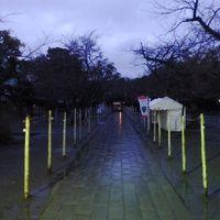 日本の旅 東海地方を歩く 静岡県三島市、夜の三嶋大社(みしまたいしゃ)三島駅周辺