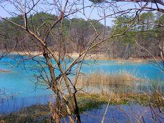 色とりどりの水辺に魅せられて−−−五色沼、桧原湖そして袋田の滝へ。