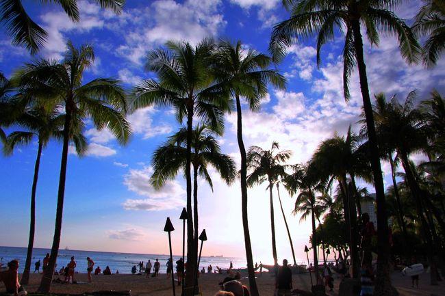 """まだ日本の外為が固定相場制だった時代、年配のおばサマ達が海外に行くと云えば、その行先の大半がハワイ。 <br />帰国後に見せてもらった写真には、レイをかけた満面笑顔の彼女たちの姿とその背後に広がる白い砂浜と青い海。 <br />私が暮らしていた荒々しい日本海とは異なるトロピカルなハワイの海は、日常とは異なる別世界だった。 <br /><br />そしてTVのバラエティ番組が全盛期を迎えていた頃、ハワイと云えば芸能人が行く所。 <br />正月にはレポーターを伴った有名人が大量にハワイに押し寄せ、賑やかに遊ぶ彼らの様子を公共の電波に乗せていた。 <br />率直に言えば、つまらなく、興味が湧かない映像だった。 <br /><br />そんなこともあり、ハワイは私には縁がない土地だと長年の間、思っていた。 <br /><br />でも、それは私の思い違い。 <br />ハワイの自然の美しさを最初に知ったのは、映画【ジェラシック・パーク】。 <br />映画のロケ地である大きなシダが生い茂る緑豊かなジャングル。 <br />幾筋もの滝が、木々が繁茂する断崖絶壁に白き流れを作り出す。 <br />そんな風景を見たくなり、初めてハワイを訪れたのは1999年。 <br />まだ1歳にもならない娘と共に、カウアイ島の大自然の中を歩き回った。 <br /><br />そして2014年の春、もう一度ハワイを訪れるチャンスが巡ってきた。 <br />今回の旅の友は、人生の相棒でもある彼。 <br />週末+有給休暇2日の3泊5日のハワイ旅。 <br />選んだ島は、あえて今まで避けていたオアフ島。 <br /><br />オアフ島を選んだ理由は、空から舞い降りるという経験をしてみたかったから。 <br />一生に一度となる経験ならば、青い海の上、高い上空から島を眺められる場所から飛んでみたいとずっと思っていた。 <br /><br />また、オアフ島には、一面に広がるコバルトブルーの海;周りには海しかない世界のその海の真ん中に立つことができる場所があると云う。<br />そこへ行き、青い海原に立ってみたかった。<br /><br />そして、ここには私が世界の歴史・地理に興味を持つきっかけとなった大きな樹がある。<br />その樹をこの目で見て、木肌に触れ、彼女と対話してみたかった。<br /><br />☆★☆★☆★☆★☆★☆★☆★☆★☆★☆★☆★☆★☆★☆★☆★☆★☆<br />旅程〜週末+有給2日 de 大満喫ハワイ〜<br />4/10 羽田ANA 22:55発<br />4/10 ホノルル 11:25着 スパもエステも体験!プチ・マダム修行<br />4/11 空とジャングルを楽しもう! スカイダイビングとマノア滝<br />4/12 天使の海に立つ。<br />4/13 レンタカーでビーチ巡り、憧れの彼女と出会う<br />4/13 ホノルルANA18:30 発<br />4/14 羽田 23:10着 そのまま都内のホテルへ…<br />4/15 都内のホテルから出勤!<br /><br />☆★☆★☆★☆★☆★☆★☆★☆★☆★☆★☆★☆★☆★☆★☆★☆★☆<br />旅行記〜週末+有給2日 de 大満喫ハワイ〜<br />・カハラのSpaでプチ・マダム修行<br />http://4travel.jp/travelogue/10877478<br />・スカイダイビング初体験!高度4300mからの時速200kmの大ジャンプ!!<br />http://4travel.jp/travelogue/10877947<br />・ジャングル探検・マノア滝トレイルを歩く〜滝壺の奥に潜むモノ〜<br />http://4travel.jp/travelogue/10878984<br />・太古の地球が創りし""""天使の海""""☆カルデラに浮かぶ白洲・サンドバー<br />http://4travel.jp/travelogue/10879623<br />・憧れの彼女に会いに…。火山の島オアフを遊ぶ。<br />http://4travel.jp/travelogue/10880259"""
