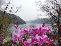 高速バスで行く、花咲く箱根芦ノ湖、大涌谷。