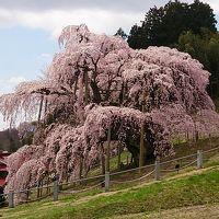 2014/4/19三春滝桜と三春まちめぐり日帰りの旅