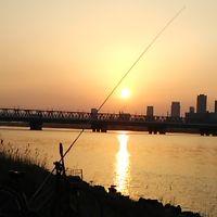 淀川での釣り「一週間」です