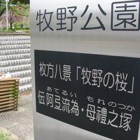 ☆willerバスの旅g☆京阪電鉄牧野駅☆阿弖流為・母禮綴①☆