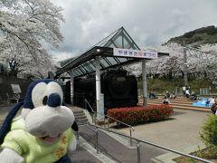 グーちゃん、伊東へ春の花見合宿に行く!(山北桜まつりに寄ってみた!編)