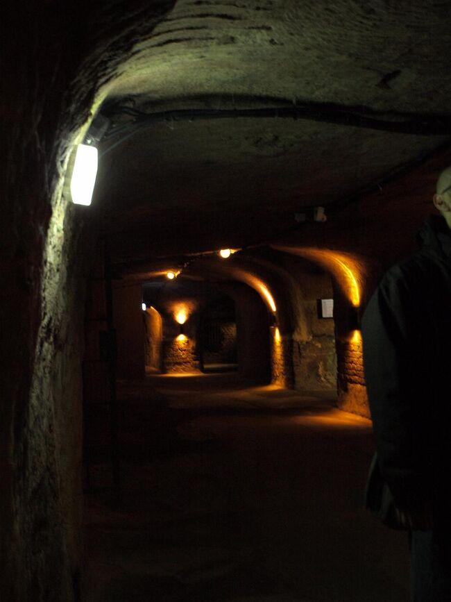 """いよいよ最後の宿泊地ニュルンベルク。<br />なぜここを選んだのか?<br />実は、特に何もなかったのですが、古城街道の主要な街であったため、行ってみることにしただけでした。<br />南ドイツといいながら、ほとんどバイエルン州に行かないのもねぇ、とも。<br />そんな適当なチョイスであったのに、行ってみれば街並みが気に入りました。<br />ニュルンベルクは特別な街だったのです。<br /><br />何が特別かというと、「カイザー(皇帝)のおわす城」とその城下町ということ。<br />カイザーの居城だから、カイザー・ブルクという名の城があります。そして人・モノ・金が集まる洗練された街だったのは容易に想像できます。<br /><br /><br />その他の日程の「南ドイツ鉄道旅行」は下記を参照してください。<br />☆vol.1 ホーエンツォレルン城<br />  http://4travel.jp/travelogue/10879284<br />☆vol.2 中世の町テュービンゲンを散策<br />  http://4travel.jp/travelogue/10879974<br />☆vol.3 廃墟に&quot;萌え""""るハイデルベルク<br />  http://4travel.jp/travelogue/10880969<br />☆vol.4 ドイツ三大美城の1つエルツ城<br />  http://4travel.jp/travelogue/10881532<br />☆vol.5 リューデスハイムでドイツ人のゴーゴーを見る<br />  http://4travel.jp/travelogue/10881734<br />☆vol.6 シャガールのステンドグラスに直線はなかった<br />  http://4travel.jp/travelogue/10881929<br />☆vol.8 ミュンヘンで完:DBと私にとってのドイツ<br />    http://4travel.jp/travelogue/10882493"""