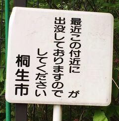 両毛線で吾妻山ハイキング 【2014年GW】