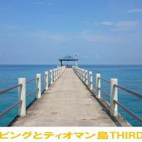 猫とダイビングとティオマン島THIRDステージ