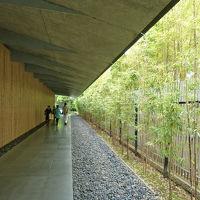 根津美術館へ尾形光琳の「燕子花図屏風」を見に行く