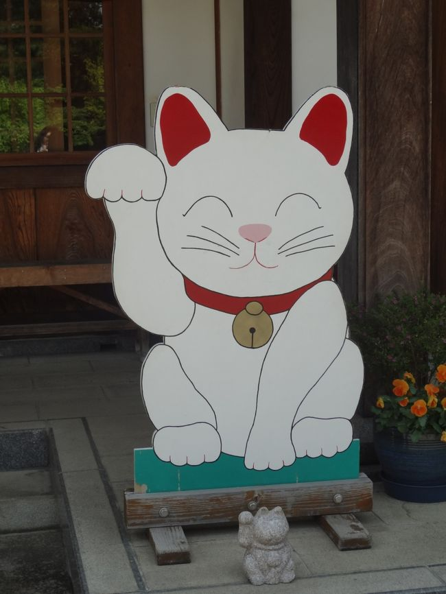 先日、秩父神社にてご朱印デビューをようやく果たした私。<br />職場の同僚にもご朱印集めをしている方がいて今度どこかにって話していたら<br />「テレビで招き猫のお寺やってたよー」って「じゃあ行こうか!」と<br />休みは同じ日に入れてあったので話はあっさりまとまりました。<br />豪徳寺を調べると、世田谷八幡宮、松蔭神社。<br />美味しいものはかかせない〜。<br />色々検索してくれる友人なのですっかりおまかせ。<br /><br />当日、朝からまぶしいくらいのいいお天気!(日焼けが怖い)<br />天気予報では午後から突然の雨と言っていましたが・・・<br />私は本来結構な晴女!!!<br />うまい具合に雨をすりぬけ傘を使わず過ごせました。<br />世田谷はコンパクトに回れたし、思いがけず行ってみたかった新橋烏森神社にも行けて<br />有意義な1日でした。<br />