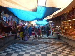 インド寺院めぐり一人旅8~デリー(古い寺院とアーユルヴェーダ)
