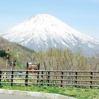 驚きの安さ!バニラエアー北海道ツアー1泊2日