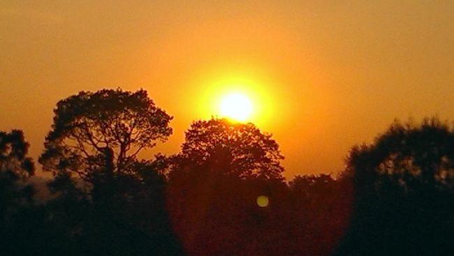 アンコール遺跡観光2回目で、ようやく夕日の鑑賞に成功。<br /><br />前回は、プノン・バケンで好天に恵まれながら、日が沈む直前になり急転直下、雨が降り出し太陽は雲に隠されるという悲劇に。<br /><br />今回は、プレ・ループで挑戦し、見事にサンセット撮影に成功しました。<br /><br />夕日の撮影の難しさを実感しながらカメラの設定をいろいろ試しつつ、撮影に挑戦しました。<br />プレ・ループの夕日撮影は、木々の生い茂るジャングルに沈む太陽と陰になるジャングルのシルエットを楽しみながらの撮影でした。<br /><br />たくさんの世界中の観光客と撮影ポイント争いをしつつ、すばらしい景観を共有できました。