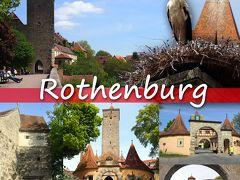ドイツ鉄道で4都市をめぐる旅 3 -ローテンブルク編(市壁巡りとコウノトリ発見、フランケンワイン)-