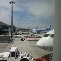拡張され立派になった羽田国際線ターミナルからANA新規路線 (現地午後2時前に到着が嬉しい) 羽田~マニラへ快適なBー787で飛ぶ - 5月 2014年
