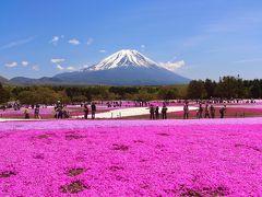 富士芝桜まつり&竜ヶ岳登山・河口湖