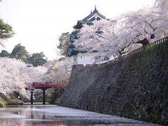 2014.4 結婚32周年記念東北桜巡り旅行③…圧巻!満開の桜とはこういうもんだ!