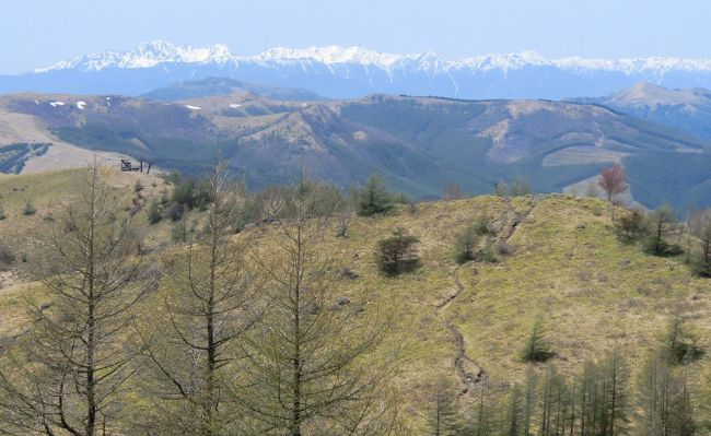 ホテルアンビエント蓼科に3連泊して最終日は八子ケ峰ハイキングをする。連日の好天で八子ケ峰の稜線からは白銀のアルプスの大展望が満喫できた。下山後はエクシブ蓼科に立ち寄り、ラウンジで軽くランチタイムにする。ここのテラス席が素晴らしい。新緑に囲まれた蓼科山麓を眺めながら食後のコーヒーをテラス席で楽しむ。優雅な高原リゾートのフィニッシュにふさわしい。<br />写真:北アルプス大パノラマ(中央より左→槍・穂高連峰)<br /><br />私のホームページ『第二の人生を豊かに―ライター舟橋栄二のホームページ―』に旅行記多数あり。<br />(新刊『夢の豪華客船クルーズの旅』案内あり)<br />http://www.e-funahashi.jp/<br />注:上記の本は「ホテルアンビエント蓼科」の売店にて販売中