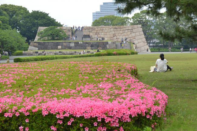 皇居東御苑に行ってきました。<br />この時期はサツキやツメクサが一面に咲いていてきれいです。それとハマナスなど女性の皇族方ゆかりのバラが植えられているバラ園が開花時期です。<br />日曜日のお昼時の散策で、お花の写真撮影を楽しんできました。<br />コースとしては<br />東西線の竹橋駅→和気清麻呂像→平川門から皇居東御苑に入場→梅林坂→天守台跡→バラ園→松の大廊下跡→展望台→汐見坂→二の丸庭園→大手門→パレスビルの野菜ダイニングほんのちょっとで昼食<br />以上で所要時間は3時間半ほどです。<br />おかげさまで写真は300枚以上撮りました。ここではその一部をご紹介します。