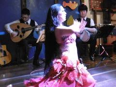 妖艶で堪能的不思議な魅力を持つベリーダンス   魅惑の夕べ・・・・