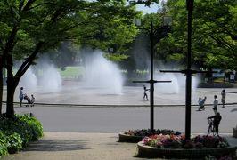 2014春、バラと新緑の庄内緑地公園(3/3):5月23日(3):公園の温室、温室の周りの草花と樹木