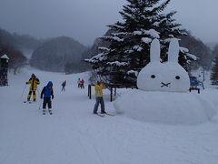 やっと子供がリフトデビュー!ファミリーゲレンデのかたしな高原スキー場の旅、2泊3日。