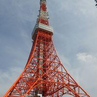 東京タワーの1階にある東京タワー水族館見物