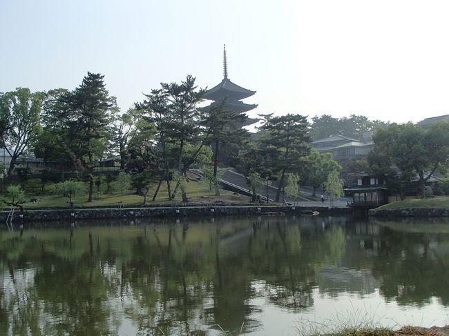 奈良に宿泊して奈良公園とその周辺を散策しました。<br /><br />5月30日は、ホテルに到着後、ライトアップされている興福寺五重塔と東大寺二月堂を訪れました。<br />5月31日は、早起きしてこみ合う前に、東大寺から春日大社を訪れ、お昼からは高畑や佐保に足を伸ばしました。