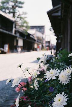 江州・近江八幡 近江商家と八幡堀の町並み散策をぶらぶら歩き旅