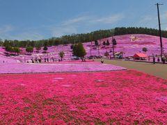 2泊3日北海道旅行・2日目東藻琴の芝桜と摩周湖編