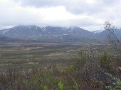 ソリちゃんのアラスカ・カナダ旅行記 前半