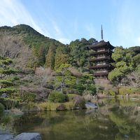 今年はどこに行こうかな・・・で、山口市に初詣でに行きました。そして、下関市で「ふぐ」を堪能・・・さすがに美味しかったですよ。