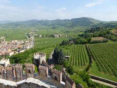 初夏の優雅な北イタリア旅行♪ Vol47(第4日目午前) ☆ソアーヴェ(Soave):憧れのスカラ城(Castello Scaligero)から見渡す絶景のブドウ畑♪