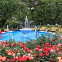 岩手  花巻温泉バラ園へ。。