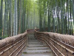 梅雨間近の嵯峨野散歩