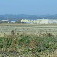 袋井市でバードウォッチング [2014](1)