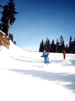 2001年 オーロラ鑑賞&スキー(7 days) =ウィスラー=