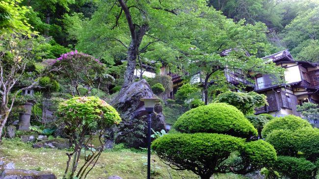 半年ぶりに帰国したので、妻と温泉旅行を計画しました。復興支援などと大げさな気持ちはありませんでしたが、どうせ行くならお湯に恵まれた福島へ出向くのが良いと意見が一致し県内の二か所の温泉をはしごしました。<br />二泊目の、この老舗旅館は、建物、内装すべてに会津藩から引き継がれた歴史が感じられます。行き届いたサービスはもとより、さっぱりしたかけ流しの浴場には、正統派への拘りを感じさせられました。良き日本の文化を海外の友人に紹介するのに持って来いだなと思っていたその矢先に米国からと思われる団体さんが到着。やはり、考えることは同じですね。<br />翌日は、鶴ヶ城に立ち寄って帰宅。すぐに高速に乗らず鬼怒川まで国道をたどったのですが、これがまた快適でぜひまた来ようとの思いを強くしました。